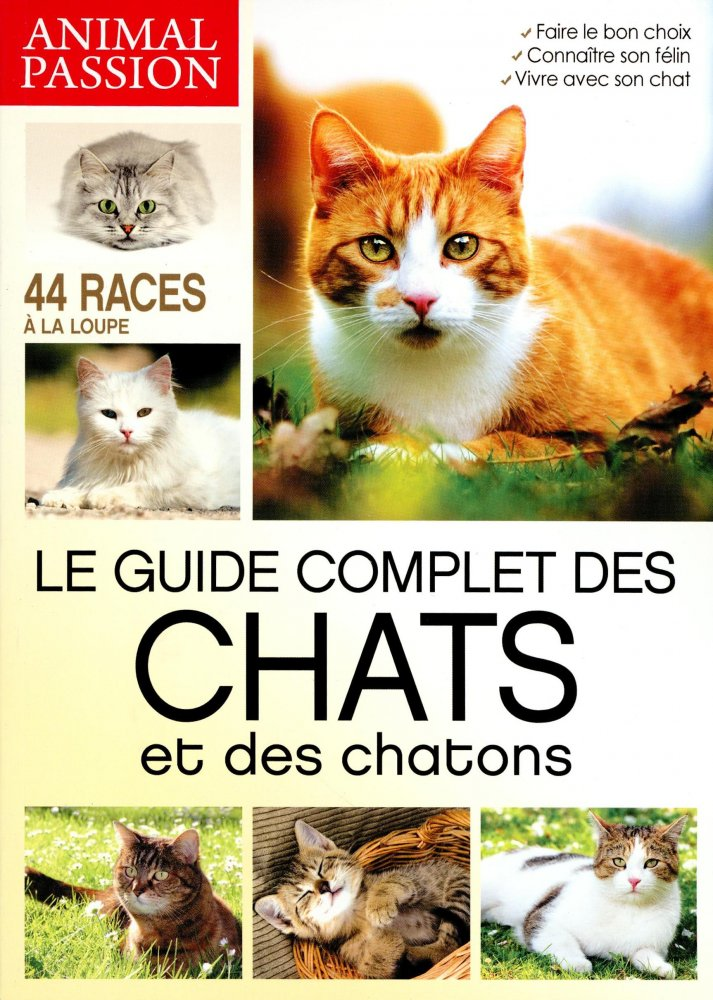 Chats Passion